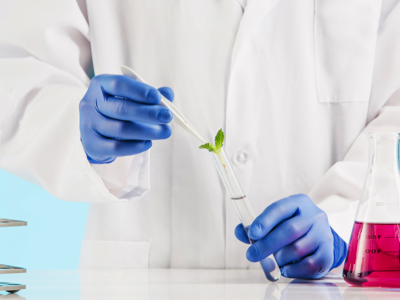 Scientist Works With Plant Material, Credit: Stock Photography