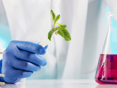 Plant Science, Credit: Stock Photography